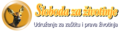 szz_logo_naziv_slogan_transparent